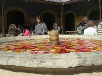 fontana - vecchio mercato - Infiorata 2010 - 16 maggio 2010  - Noto (2638 clic)