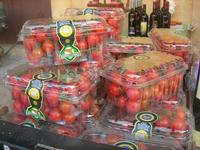 pomodoro di  Pachino - vecchio mercato - Infiorata 2010 - 16 maggio 2010  - Noto (2899 clic)
