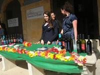 al vecchio mercato - Infiorata 2010 - 16 maggio 2010  - Noto (2511 clic)