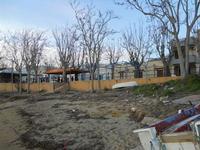 il piccolo borgo marinaro tra Mazara del Vallo e Campobello di Mazara - 28 febbraio 2010  - Torretta granitola (1962 clic)