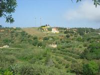 C.da L'Acqua La Vite - panorama - 25 aprile 2010  - Castellammare del golfo (1575 clic)