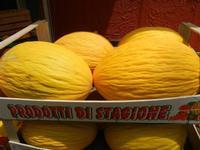 meloni gialli - 26 luglio 2011  - Alcamo (865 clic)