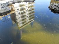 Piazza Mokarta - riflessi nella fontana con pesci - 9 maggio 2010  - Mazara del vallo (2106 clic)