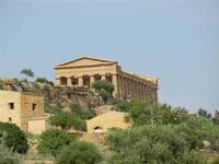 Parco archeologico Valle dei Templi - 3 giugno 2011  - Agrigento (1959 clic)