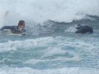 surf - Baia di Cornino - 9 ottobre 2011  - Cornino (1176 clic)