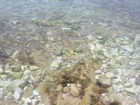 all'Isulidda - mare trasparente - 21 luglio 2010  - Makari (2068 clic)