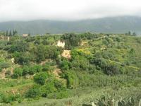 C.da L'Acqua La Vite - panorama - 25 aprile 2010  - Castellammare del golfo (1548 clic)