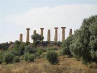 Parco archeologico Valle dei Templi - 3 giugno 2011  - Agrigento (1973 clic)