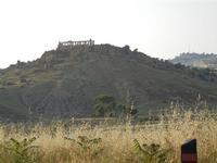 Parco archeologico Valle dei Templi - 3 giugno 2011  - Agrigento (2121 clic)