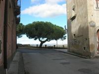 vista da Largo San Giorgio - 4 dicembre 2010  - Caltagirone (1686 clic)