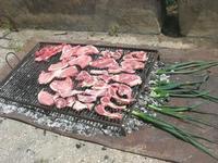 grigliata di carne - 25 aprile 2010  - Castellammare del golfo (3998 clic)