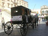 Corteo Barocco - 16 maggio 2010  - Noto (2912 clic)