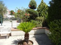 un angolo del nostro giardino - 7 luglio 2011  - Alcamo (740 clic)