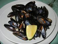 cozze scoppiate - Aloha - 29 luglio 2011  - Alcamo marina (1469 clic)