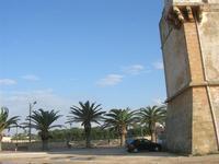 Torre di avvistamento e palme sul lungomare - 7 novembre 2010  - Marausa lido (1597 clic)