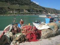 al porto - 21 febbraio 2010   - Castellammare del golfo (1556 clic)