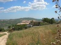 Castello di Rampinzeri - 6 giugno 2010  - Santa ninfa (2213 clic)