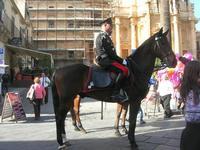Carabiniere a cavallo - Infiorata 2010 - 16 maggio 2010  - Noto (4370 clic)