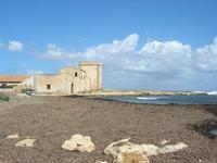 Marina di Cinisi - alghe - 26 settembre 2010  - Cinisi (3298 clic)