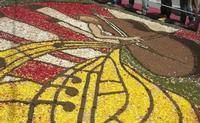 Infiorata 2010 - Bozzetti ispirati al tema: Musica dipinta: le forme e i colori della musica - DUETTO CLASSICO - particolare - Via Nicolaci - 16 maggio 2010   - Noto (2840 clic)