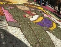 Infiorata 2010 - Bozzetti ispirati al tema: Musica dipinta: le forme e i colori della musica - UOMO CHE SUONA IL TAMBURO - Via Nicolaci - 16 maggio 2010    - Noto (2691 clic)