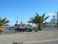 relax al porto - 31 luglio 2010  - Trapani (1749 clic)