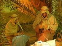 L'arrivo dei Re Magi - 6 gennaio 2011  - Guarrato (982 clic)
