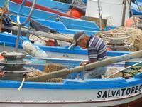 al porto - pescatore ripara la rete - 25 settembre 2011  - Castellammare del golfo (1153 clic)