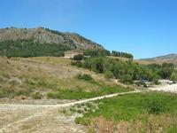 Tempio - 1 agosto 2010  - Segesta (2812 clic)