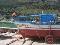 al porto - 21 febbraio 2010  - Castellammare del golfo (1503 clic)