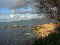 Capo Lilybeo (o Capo Boeo) - panorama fino al Monte Erice - 23 gennaio 2011  - Marsala (1038 clic)