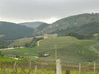 panorama e tempio - 20 dicembre 2009  - Segesta (3430 clic)