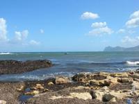 Marina di Cinisi - scogli ed alghe - 26 settembre 2010  - Cinisi (3599 clic)