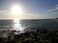 scogli, sole, mare - 6 gennaio 2010  - Marinella di selinunte (3138 clic)