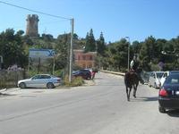 Baia di Guidaloca - 3° EQUIRADUNO COSTA GAIA San Vito Lo Capo - 3 aprile 2011  - Castellammare del golfo (1572 clic)