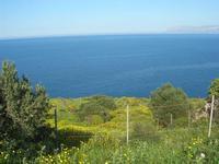 panorama del Golfo di Castellammare - 3 aprile 2011  - Riserva dello zingaro (689 clic)