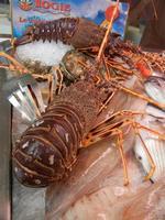 pesci in vetrina - La Cambusa - 25 settembre 2011  - Castellammare del golfo (732 clic)