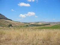 panorama agreste - 7 luglio 2011  - Segesta (844 clic)