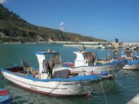al porto - 21 febbraio 2010  - Castellammare del golfo (1549 clic)