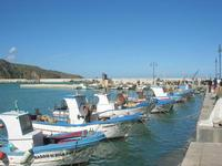 al porto - 21 febbraio 2010  - Castellammare del golfo (1681 clic)