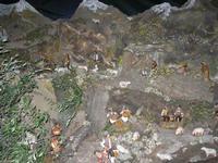 presepe - 4 dicembre 2010  - Caltagirone (1427 clic)