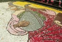 Infiorata 2010 - Bozzetti ispirati al tema: Musica dipinta: le forme e i colori della musica - LA MUSICA - particolare - Via Nicolaci - 16 maggio 2010   - Noto (2544 clic)