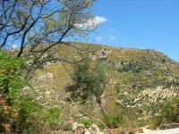 C/da Dagala Secca - panorama - 5 settembre 2010  - Castellammare del golfo (1241 clic)
