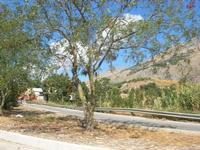 strada d'ingresso al piccolo borgo - 5 settembre 2010  - Balata di baida (2030 clic)