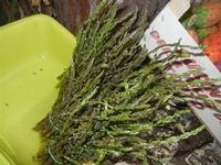 asparagi - 30 ottobre 2011  - Scopello (1171 clic)