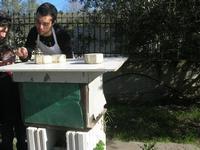 visita all'Apicoltura Cannizzaro - arnia - 5 dicembre 2010  - Grammichele (2630 clic)