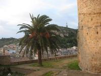 Castello Arabo Normanno - panorama della città - 9 gennaio 2011  - Salemi (1102 clic)
