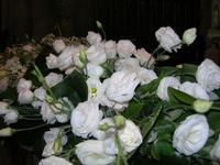 composizione di rose bianche - Duomo (sec. XIV) Maria SS. Assunta - 22 giugno 2010  - Erice (2485 clic)