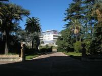 Villa Patti - viale d'ingresso e giardino - 5 dicembre 2010 CALTAGIRONE LIDIA NAVARRA