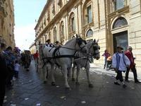 Corteo Barocco - Infiorata 2010 - 16 maggio 2010  - Noto (2875 clic)